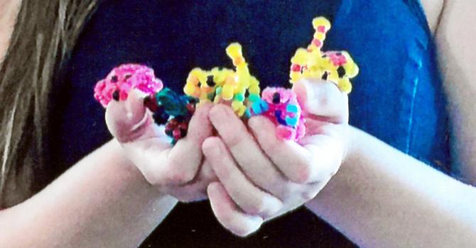 Whitecourt Teen Shares Creative Gifts for PWRDF