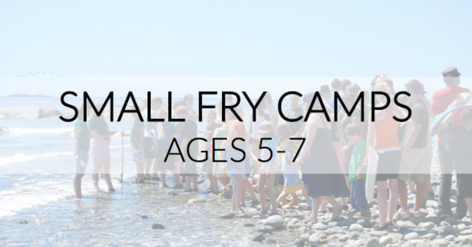 Small Fry Camps