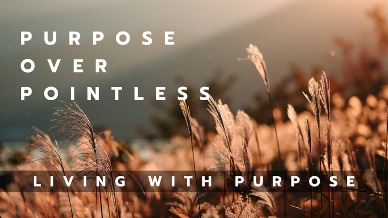 Purpose over Pointless
