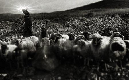 Why shepherds at Bethlehem?   Living Theology