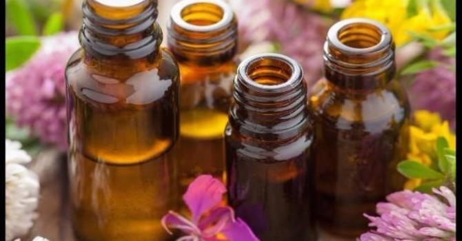 Essential Oils Basics Class