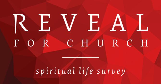 REVEAL Survey image