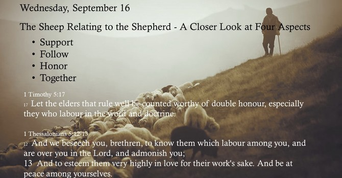 The Sheep Relating to the Shepherd