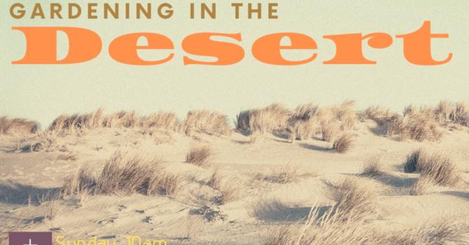 Gardening In The Desert