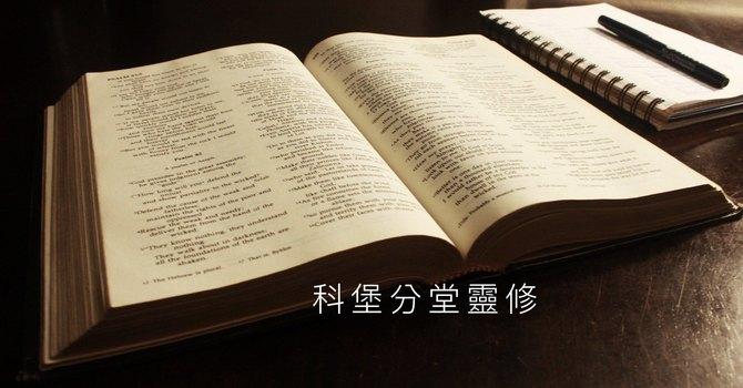 Study 5 - Psalms 詩篇 7 & 8 image