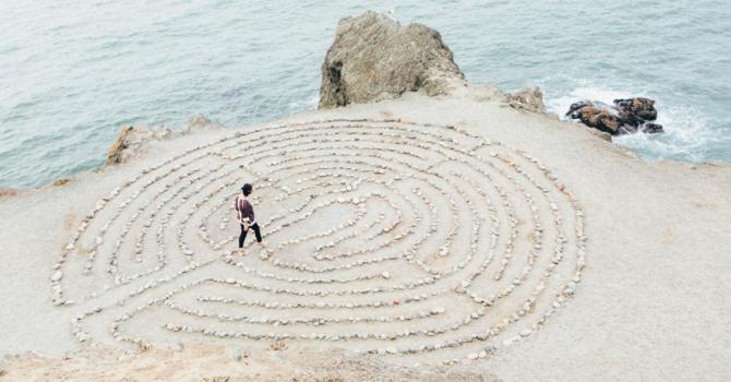 Celebrating Mindfulness