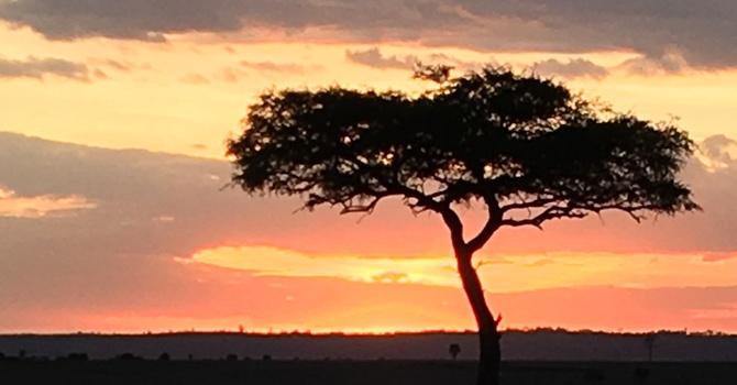 Kenya Newsletter 2019 image
