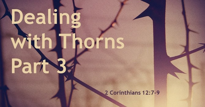 Dealing with Thorns ~ Part 3