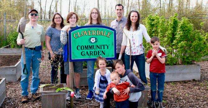 Community Garden In Full Swing image