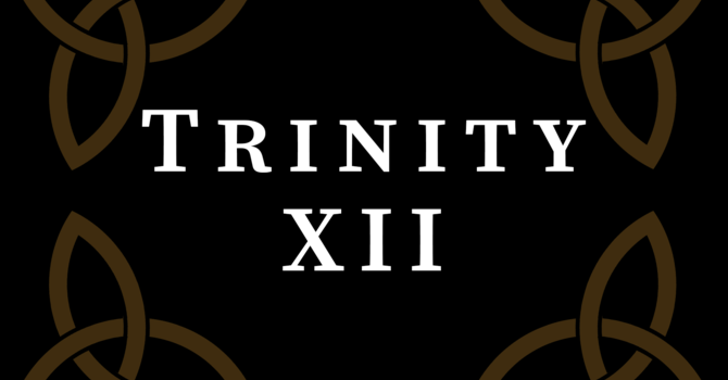 Trinity XII 2020, 10:00 A.M.