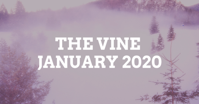 January Vine image
