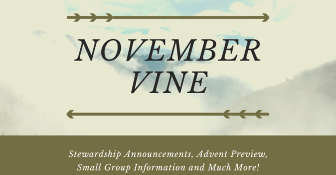November Vine image