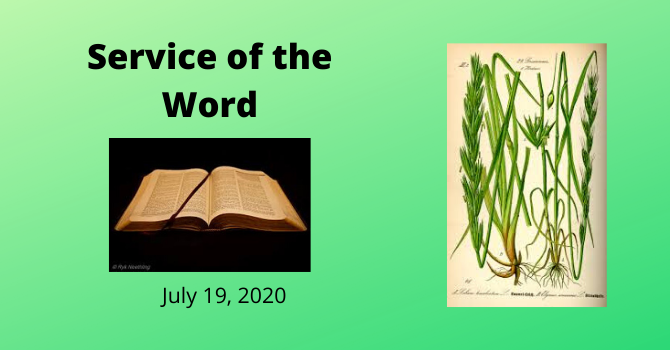 July 19, 2020 On-line service image