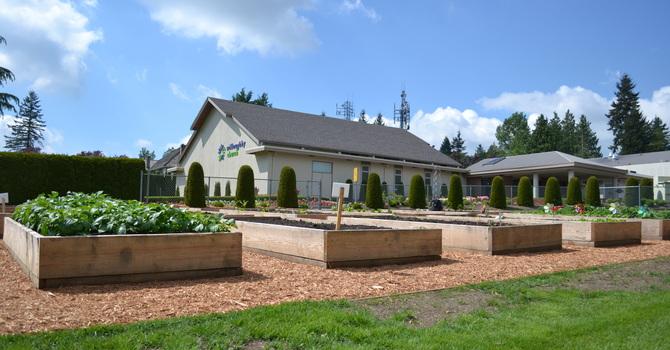Willoughby Community Garden Update image