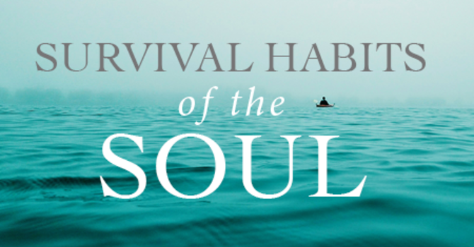 Survival Guide for the Soul: New Online Course image