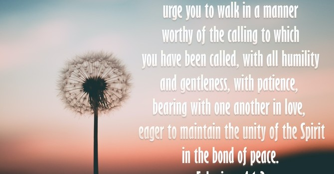 Walk in the Lord's way