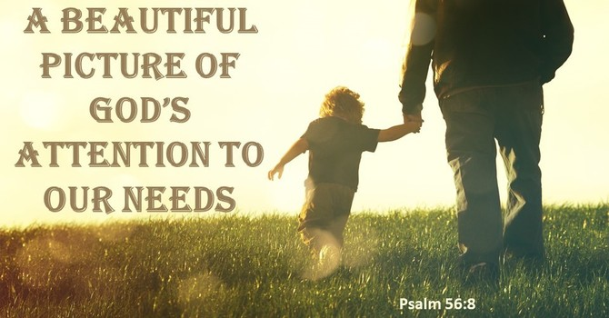 A Beautiful Picture of God's Attention to our Needs