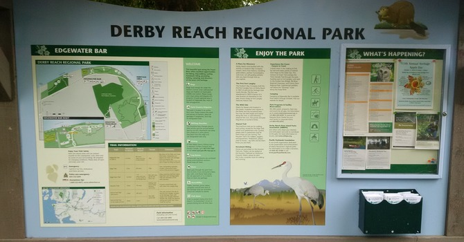 The Cadets Ride Derby Reach  image