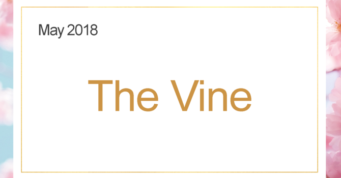 The May Vine image