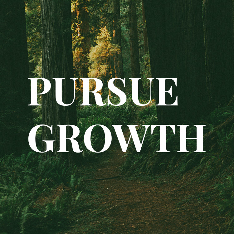Pursue Growth