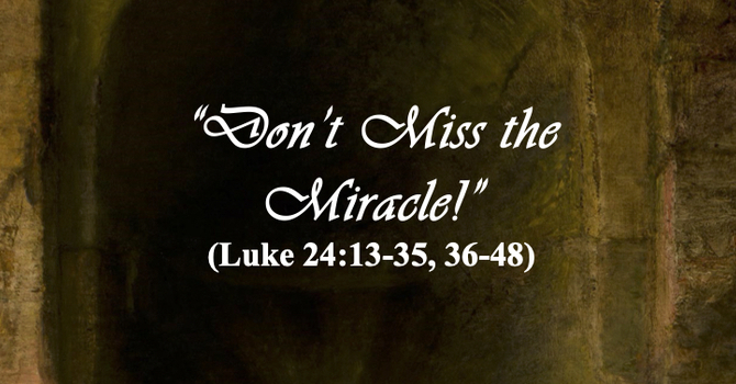 Don't Miss the Miracle