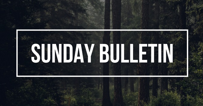 Sunday Bulletin image
