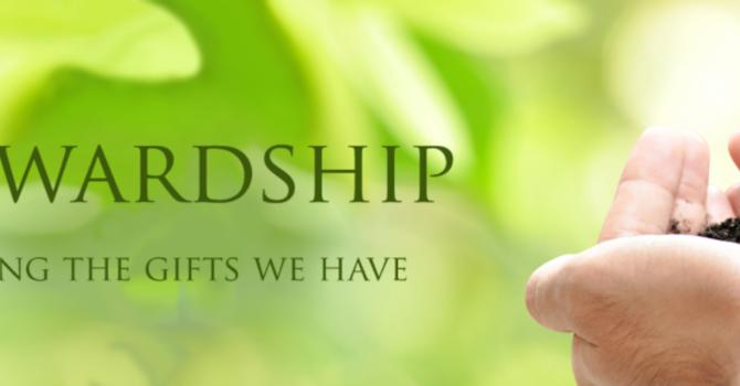 Stewardship Campaign Week 4 - Giving image
