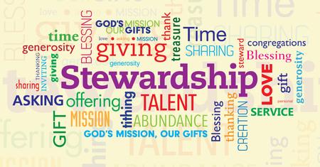 Salt and Light - Stewardship 2017