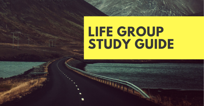 Life Group Study Guides image