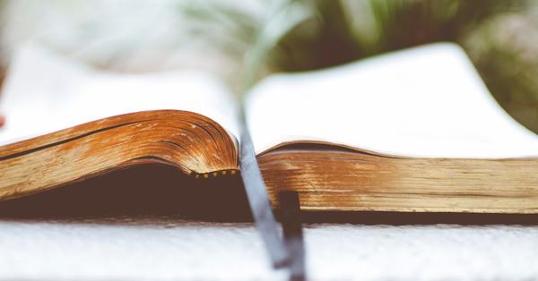 Lenten Series: Read Along with Bishop Jane to the Gospel of Mark