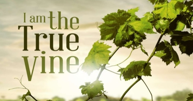 Richard - I am the True Vine