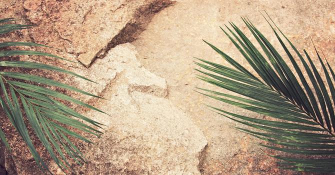 April 5 Palm Sunday