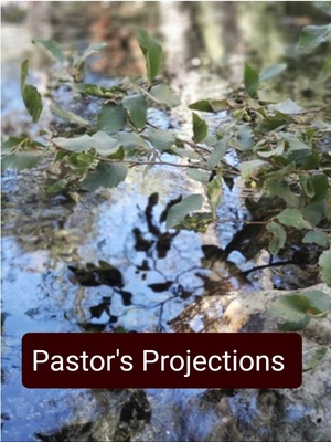 Pastor's Projections