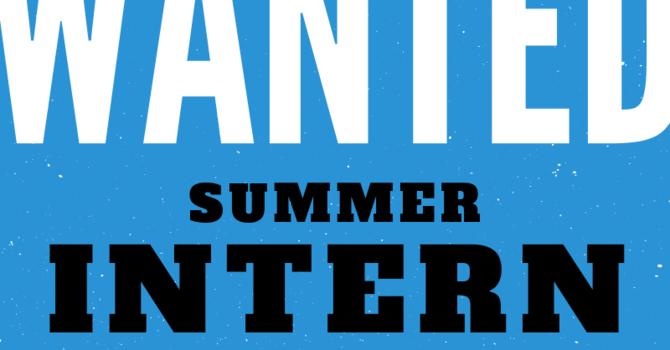Summer Intern Wanted