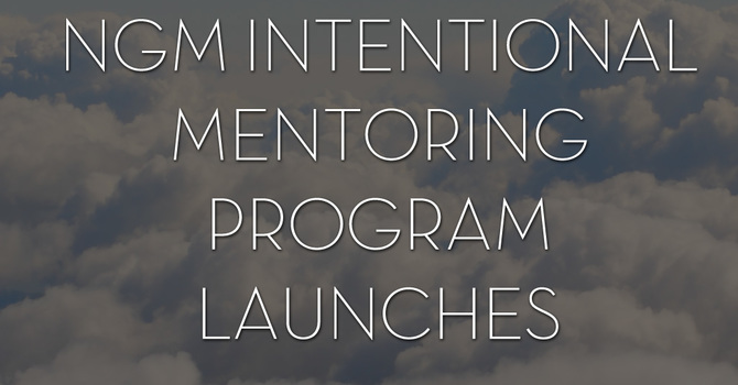 What is the NGM Mentoring Network?   image