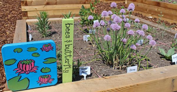 Calling All Urban Gardeners!