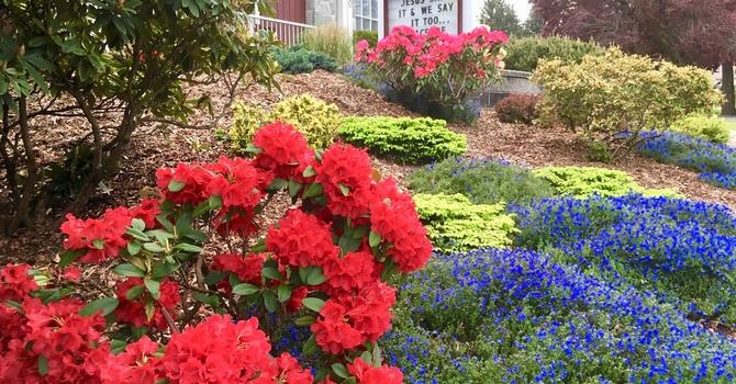 Thank you gardeners! image