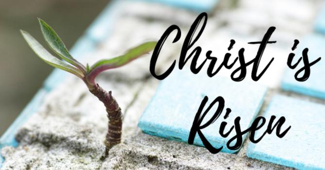 Christ is Risen image