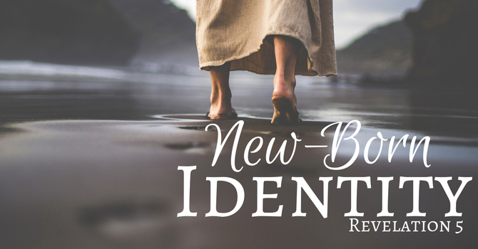 New-Born  Identity