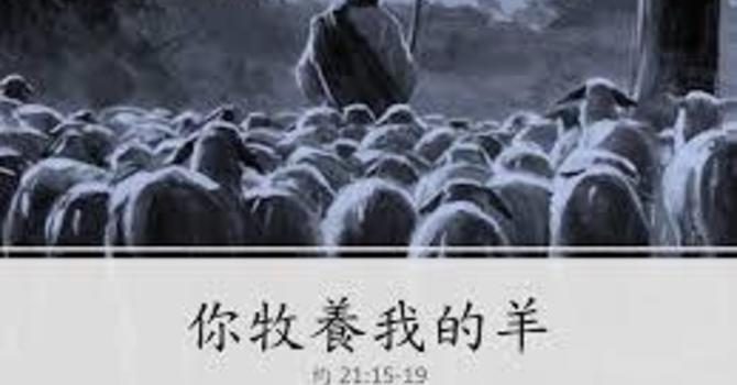 約翰福音 二十一 15-19