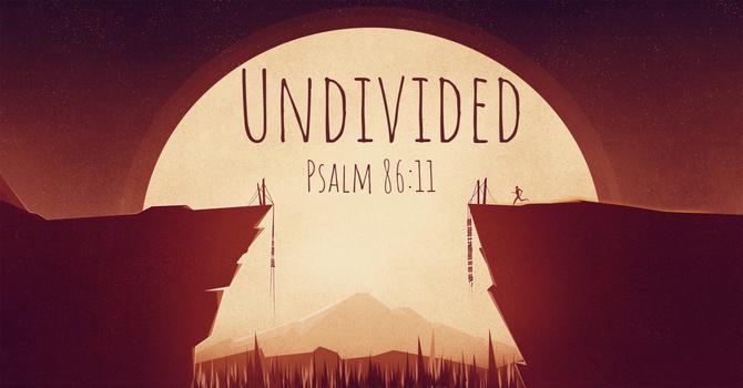 Undivided image