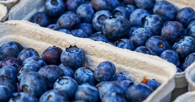 Blueberry Sale image