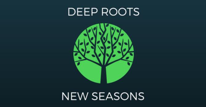 Deep Roots New Seasons