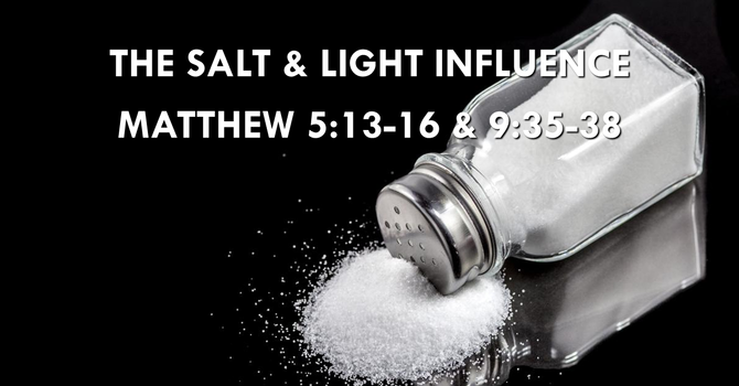 The Salt & Light Influence