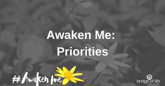 Awaken Me: Priorities