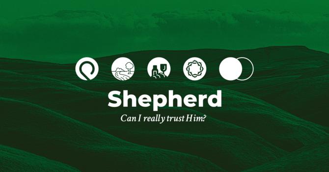 SHEPHERD: Follow – Ray AM