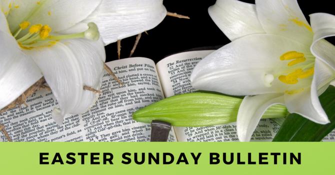 Bulletin - Sunday, April 21, 2019