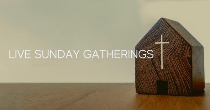Live Sunday Gatherings image