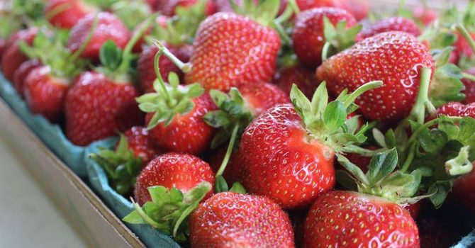 Sweet Strawberry Social June 15 image