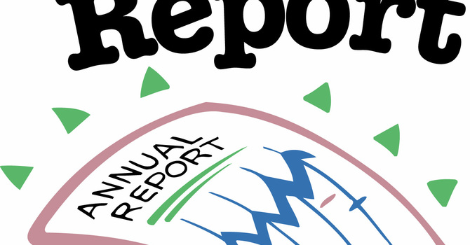 Annual Report for 2019 image